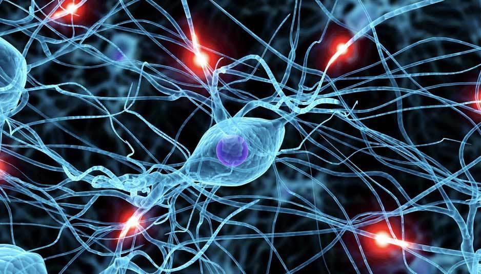 I ricercatori IBM creano i neuroni artificiali