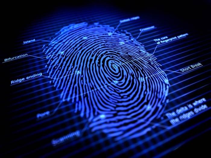 L'unicità delle impronte digitali